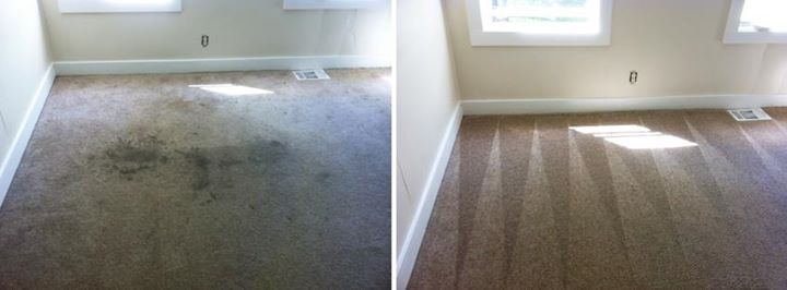 Before and After Carpet Cleaning NJ