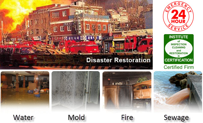 Disaster Restoration Water Mold Fire Sewage Cleanup