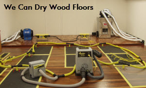 Hardwood floor drying nj