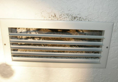 Mold Inside Air Conditioners A C Mold Removal Nj