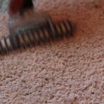 carpet-fiber-adj