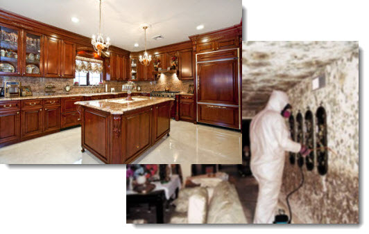 Photos of Kitchen Cabinet Mold Removal