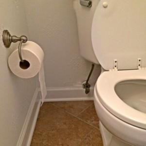 toilet overflow manalapan nj