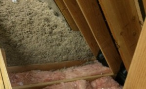 attic damage insulation