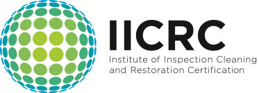 IICRC certified Mold Removal NJ