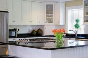 Kitchen odor mold testing