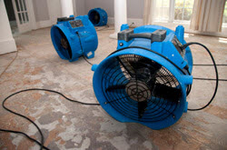 Commercial water removal