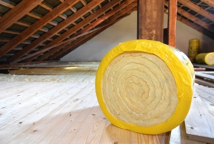 Attic Mold Cleanup