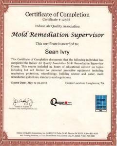 IAQ Mold Remediation Supervisor