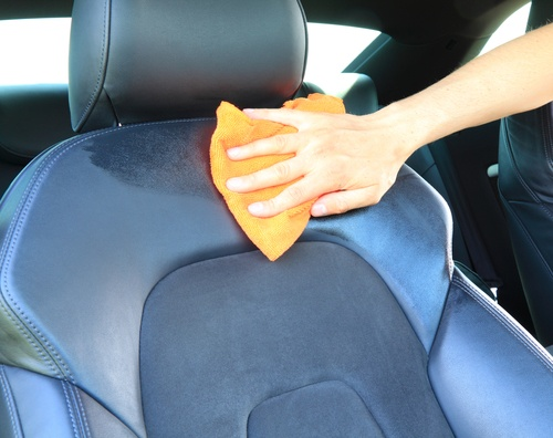 Mold in Your Car