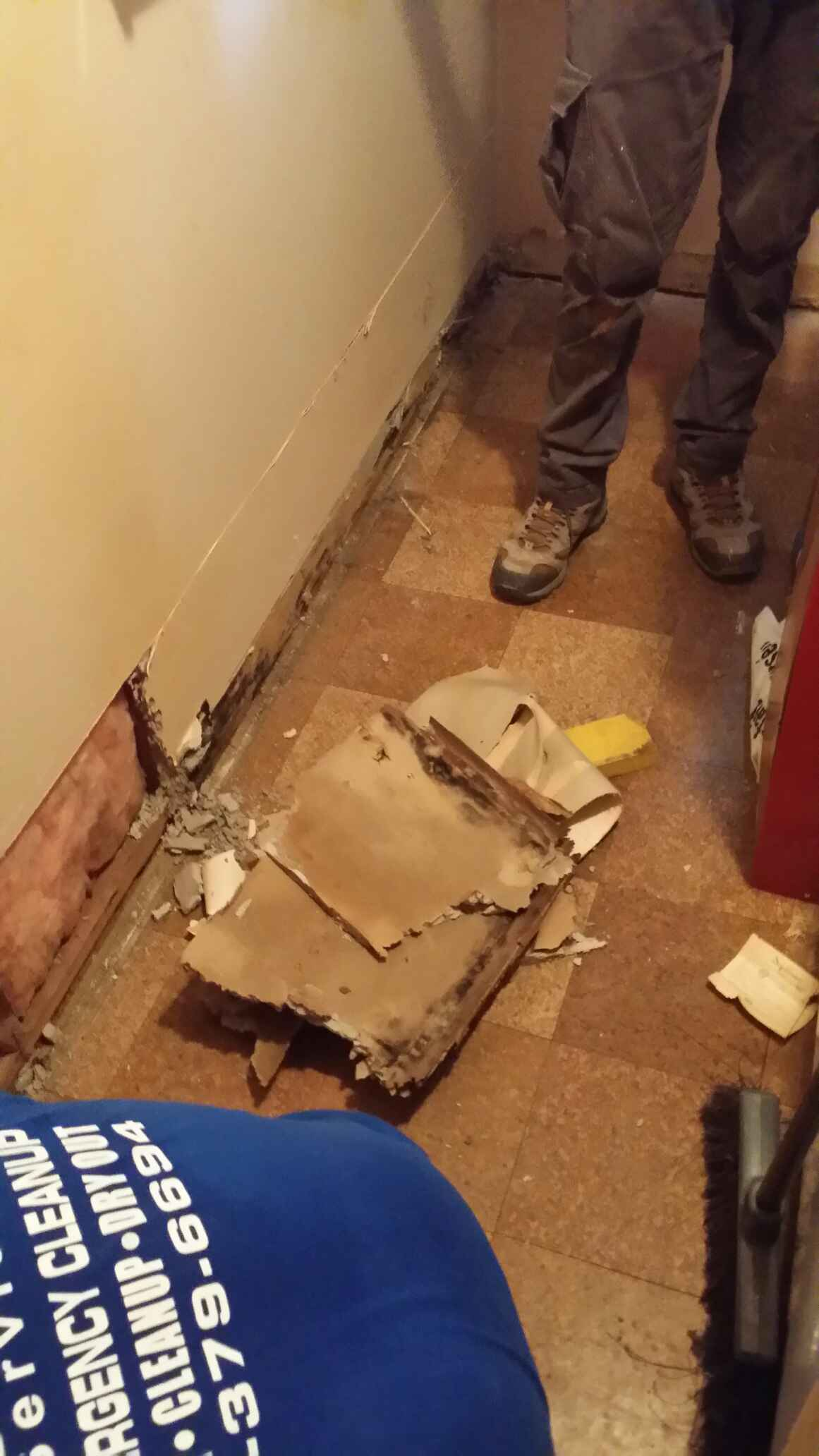 Removal of wet sheetrock due to water damage in Fair Haven, Rumson, Red Bank Area
