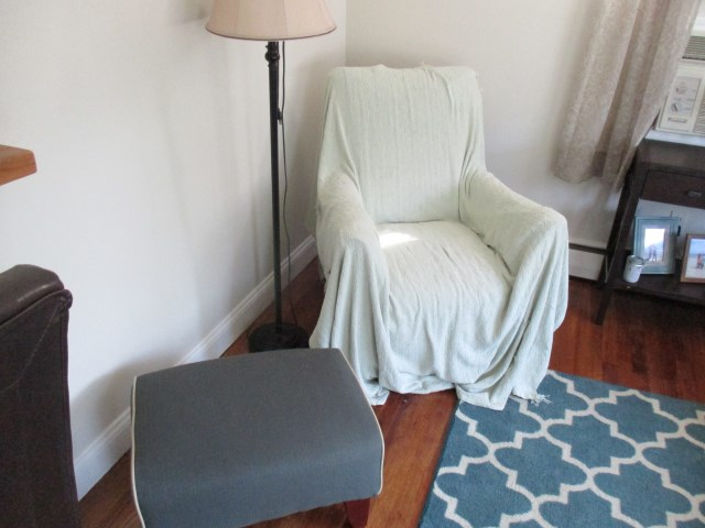 Upholstery Affected by Skunk Odor