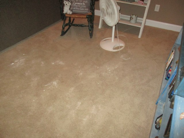 Carpet affected by odor