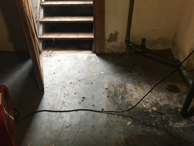 Basement Sewer Damage