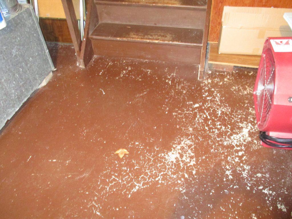 Cement Floor Post Clean Up
