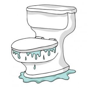 Toilet Overflow in Manalapan