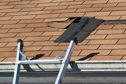 Roof Leaks Repair and Structural Damage Cleanup