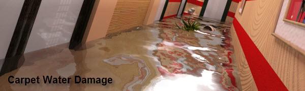 Dishwasher Leak Water Damage restoration nj